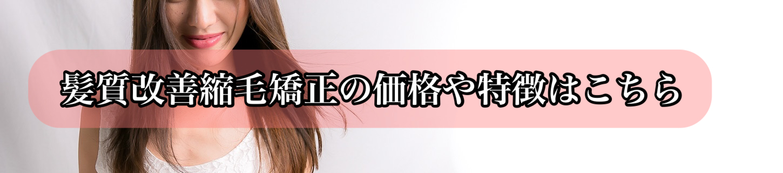 髪質改善縮毛矯正の価格や特徴はこちら 【大阪・南大阪・堺・和泉・高石・泉大津・美容室・鳳・トリートメント】